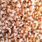 Crêtes de coq au piment d'Espelette - Pâtes sèches BIO