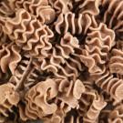 Radiatore aux grillons - Pâtes sèches aux insectes