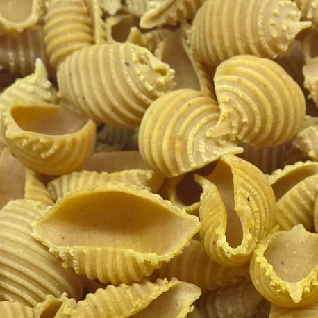 Conchiglie rigate au curry de Madras - Pâtes sèches